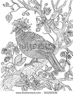 Hand drawn bird - Crowned dove on a branch of a blossoming tree. Coloring page.