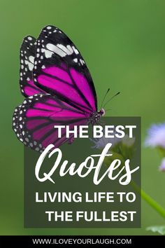 The Best Quotes About Living Life To The Fullest Mind Body Spirit Enjoy our collections of life quotes to live by The inspirational words of others helps us through the h. Life Quotes To Live By, This Is Us Quotes, Live Life, Free Quotes, Best Quotes, Overcoming Obstacles Quotes, Encouragement, Spirit Quotes, Writer Quotes