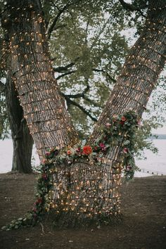 Wedding tree backdrop outdoor ceremony - A wedding signifies the introduction of the very best aspect of life. An outdoor wedding provides you with a. Wedding Ceremony Ideas, Camp Wedding, Tree Wedding, Outdoor Ceremony, Wedding Themes, Garden Wedding, Summer Wedding, Wedding Events, Wedding Reception
