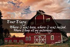 Yep,gotta barn full of memories