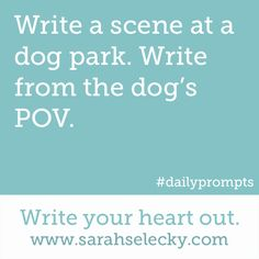 Write a scene at a dog park. Write from the dog's POV. writing prompt