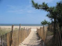 my favorite place in the world. Rehoboth Beach, DE.