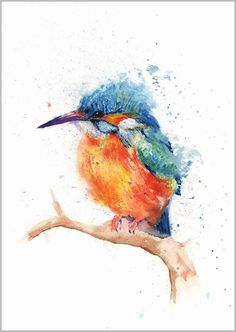 HELEN ROSE Limited Print KINGFISHER wildlife bird art watercolour painting 312