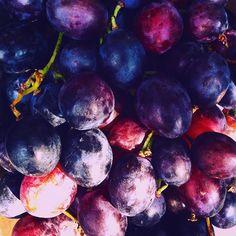 Grapes⚡️wine #somewhereinsa #winery #vscocam #farm