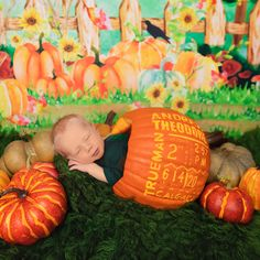 Baby Family, Beautiful Family, Calgary, Lifestyle Photography, Trick Or Treat, Family Photographer, My Images, First Love, Families