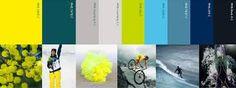 Image result for sport color schemes