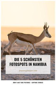 Namibia ist ein Traum für Fotografen. Das afrikanische Land hat alles, um das Fotografenherz höher schlagen zu lassen und begeistert mit wunderbaren Landschaften und einer unglaublichen Tierwelt. Mit der Kamera in der Hand könnte man monatelang in diesem Land verweilen. Nur leider haben viele nicht monatelang Urlaub. Deshalb verraten wir dir die 5 schönsten Fotospots. Namibia, Journey, Movies, Movie Posters, Pictures, Photos, African, Landscapes, Photographers