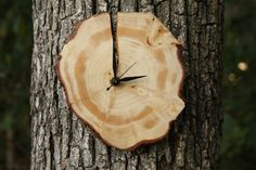 DIY Wood Slice Wall Clock--make using your recycled Christmas Tree!