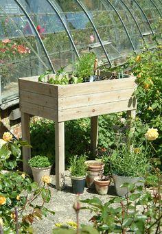 Raised planter from crocus