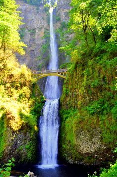 Waterfall along the Columbia River in Oregon State. I have driven past here too many times to count when I lived there! Beautiful!