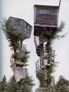 Tree hut treehouse baumhaus