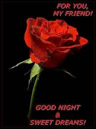 Image result for white and red roses good night