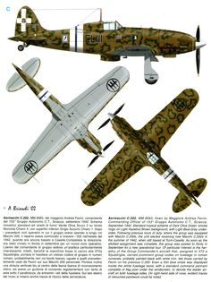 The History and Model Magazine of the Regia Aeronautica and Aeronautica Nazionale Repubblicana Ww2 Aircraft, Aircraft Carrier, Military Aircraft, Luftwaffe, Heroes And Generals, Italian Air Force, Aircraft Painting, Airplane Art, Military Pictures