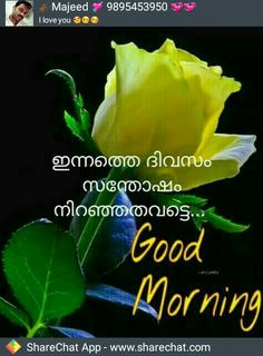 Good night images with love quotes in malayalam wallsmiga malayalam love greetings send free to your m4hsunfo