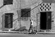 Walking the Dogs by Photographic Art by Dawn #cuba #Havana #blackandwhite A Cuban man walks his dogs on a back street of Havana.