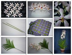 Mokara orchid - orchidea - https://www.facebook.com/Csodavirag