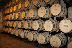 http://www.bluesunhotels.com/en/stina-winery-you-stole-my-heart.aspx