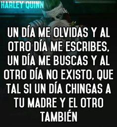 Resultado de imagen de frases de escuadron suicida harley quinn Harley Quinn, Spanish Quotes, Funny Pictures, Sad, Words, Memes, Truths, Texts, Happy