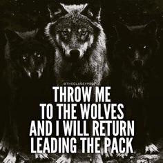 Imagen de wolf, lobos, and best sayings