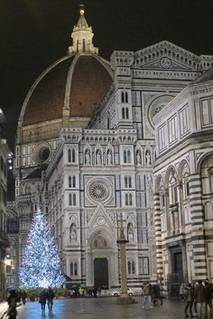 Florence + Duomo + Christmas Tree and hope for peace.