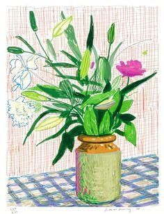 "David Hockney ""Untitled"" Lillies Ipad Drawing"