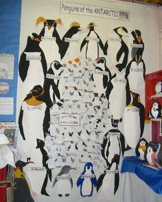 Penguins of the Antarctic classroom display photo – Photo gallery – SparkleBox - Antarctica Teaching Displays, Class Displays, School Displays, Classroom Displays, Classroom Themes, Photo Displays, Teaching Ideas, Penguin Day, Penguin Love
