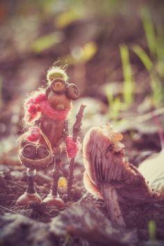 Co se najde v lese :)