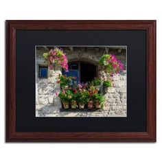 """Trademark Art 'Window Dressing' by Michael Blanchette Framed Photographic Print Matte Color: Black, Size: 16"""" H x 20"""" W x 0.5"""" D"""