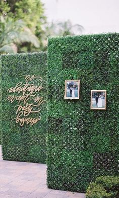 Wedding Decor Obsession Alert: Boxwood-Hedge Walls Walkway Build anticipation and create Wall Backdrops, Diy Backdrop, Wedding Backdrops, Wedding Favors, Wedding Events, Pool Wedding Decorations, Weddings, Wedding Rentals, Decor Wedding
