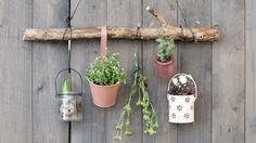 DIY : Hang plants on your walls by Søstrene Grene