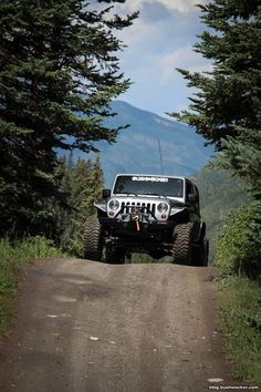 Bushwacker — Snapped during the Roof of the Rockies Jeep. Jeep 4x4, Jeep Truck, Jeep Wrangler Jk, Wrangler Unlimited, Jeep Photos, Badass Jeep, Offroader, Off Road Adventure, Cool Jeeps