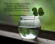 Love this simplicity. I would use a small candle votive so that the vase doesn't overwhelm the clover. A three leaf clover works too! Irish Eyes Are Smiling, Irish Cottage, Photo Images, Four Leaves, Irish Blessing, The Best Is Yet To Come, Luck Of The Irish, Four Leaf Clover, Clover Green