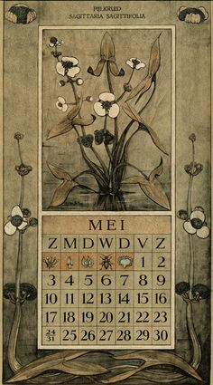 Le Roy, Charles, illustrator. May. Botanische kalender (Dutch botanical calendar). 1925.