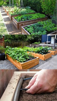 Detailed guide on how to build raised bed gardens! Lots of tips and ideas on best designs, soil, and materials for productive & beautiful DIY raised beds! A Piece of Rainbow Detailed guide on how to build raised bed gardens! Lots of tips and ideas on . Diy Garden Bed, Diy Garden Projects, Garden Boxes, Garden Ideas, Easy Garden, Garden Art, Indoor Garden, Garden Villa, Summer Garden