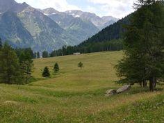 Val di peio , Trentino Mountains, Nature, Travel, Tourism, Naturaleza, Viajes, Trips, Nature Illustration, Outdoors