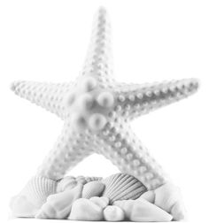 "White Beach Starfish Cake Topper Size: 5.25""L x 6""H This delightful pure white beach starfish cake topper is the perfect complement to any nautical or beach themed party event, celebration, or even as a part of an everyday home beach decor. Crafted with exquisite detail, the pure white surface is smooth and perfect, with each curve of texture adding to the depth of this magnificent dimensional piece. This is the perfect accessory for a cake or flat top dessert, being served at any…"