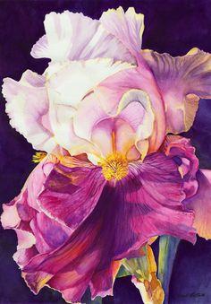 watercolor iris paintings | Candi Martin Baker
