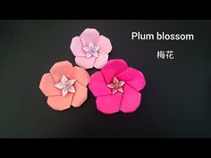 Origami Plum blossom flower version 2 折纸梅花 - YouTube