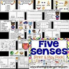 5 senses lesson plans