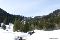 sound therapy Therapy, Mountains, Nature, Travel, Outdoor, Kunst, Outdoors, Naturaleza, Viajes