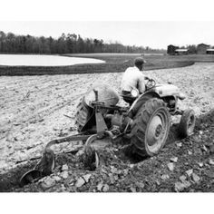 Rear view of a farmer plowing a field with a tractor Canvas Art - x Farmall Tractors, Ford Tractors, Old Farm Equipment, Heavy Equipment, Farm Images, Rear View, Historical Photos, Farming, Canvas Art