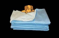 Looking for training pads or whelping boxes? Find whelping supplies, underpads, and breeding tips here. Dog Pads, Puppy Pads, Training Pads, Dog Training, Whelping Box, Newborn Puppies, Cane Corso, New Puppy, Dog Supplies