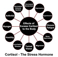 "10 Fun Ways To Reduce Your #Cortisol Levels - The body knows how to heal itself. they are beautifully equipped with natural self-repair mechanisms that fight cancer, prevent infection, repair wounds, protect us from infectious agents and foreign bodies, and even affect how our genes express themselves! But here's what most people don't know. These natural self-repair mechanisms get deactivated when your body is full of stress hormones like cortisol and epinephrine in ""fight-or-flight"" mode."