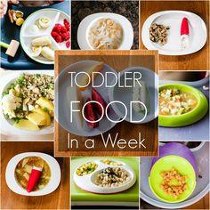 TODDLER FOOD IN A WEEK