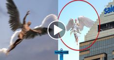 Top 10 Angels Caught On Camera Flying & Spotted In Real Life Angel Sightings Angel Sightings, Ghost Sightings, Real Paranormal, Paranormal Photos, Angel Pictures, Nature Pictures, Native American Humor, Fun Facts About Earth, Real Ghost Photos