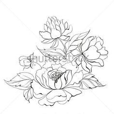 Butterfly Roses Stock Vectors & Vector Clip Art | Shutterstock ...