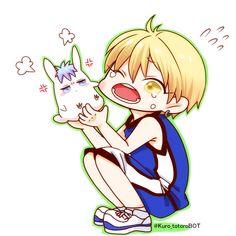 Kise and bunny Kuroko // KnB