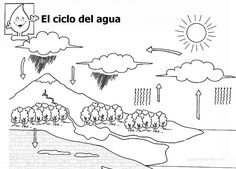 Water Cycle, Life Cycles, Science And Nature, Kids Education, Pre School, Preschool Activities, Geology, Coloring Pages, Kindergarten