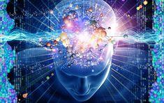 El Cerebro del Universo