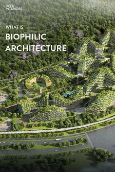 What is bibliophilic Architecture and how are architect using this concept to create innovative and nature inspired design that are inspired and blending in with its surroundings? Environmental Architecture, Hospital Architecture, Concept Architecture, Sustainable Architecture, Sustainable Design, Landscape Architecture, Architecture Design, Sustainable City, Biophilic Architecture